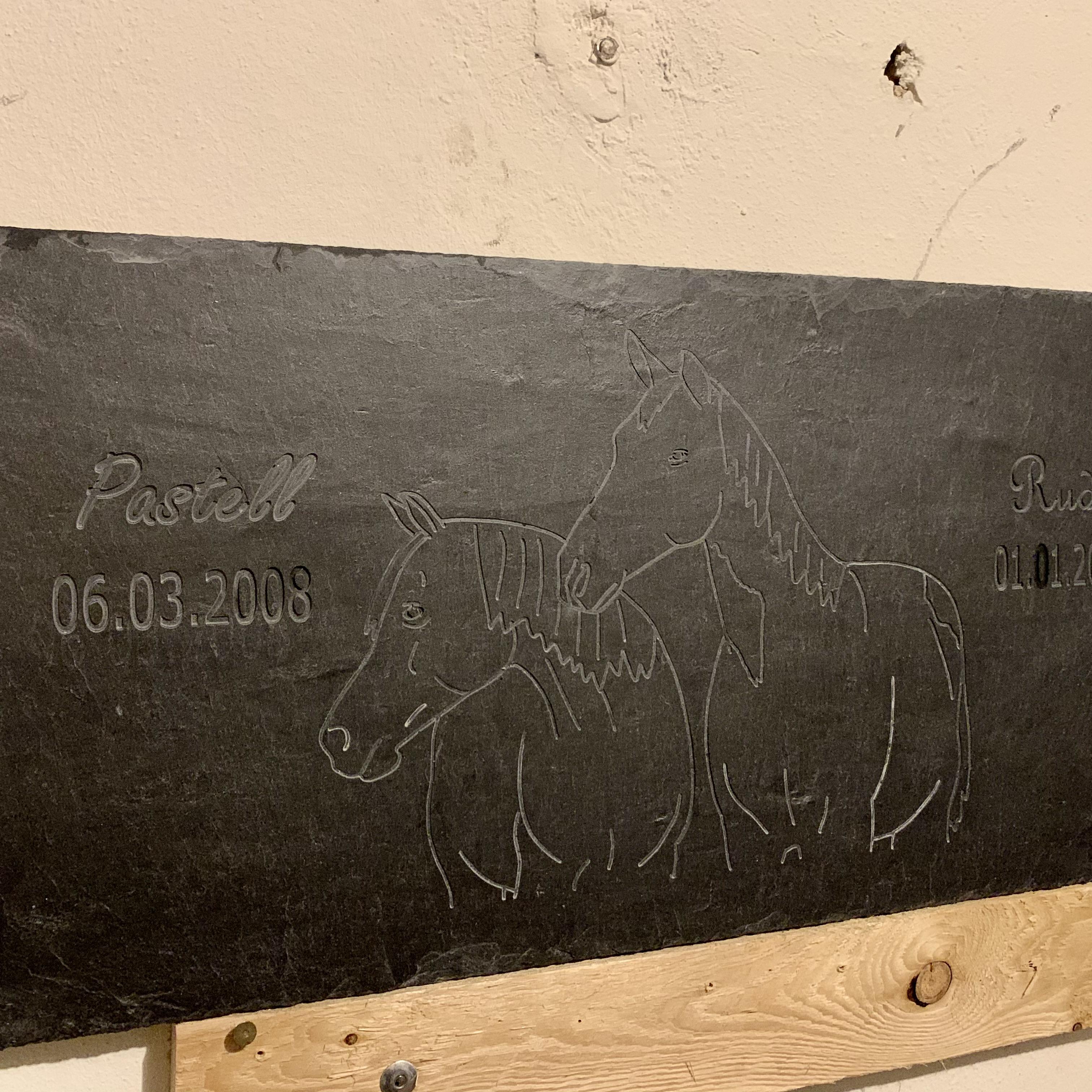Stallschild Boxenschild für Pferde personalisiert mit Namen 60 x 30 cm